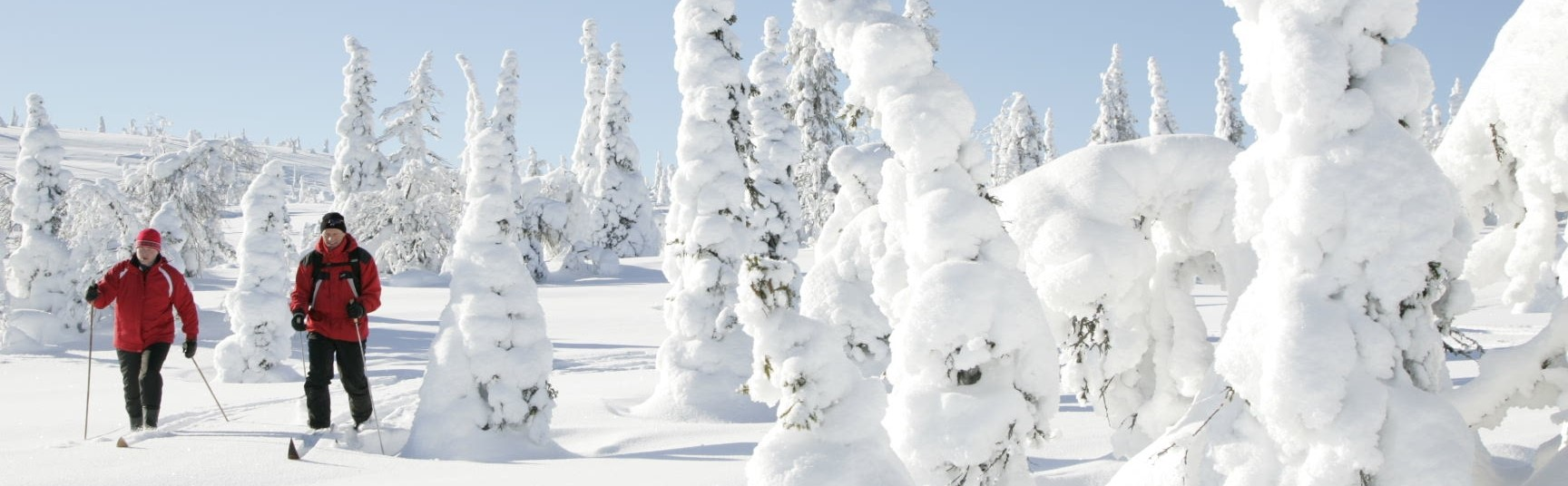 A guide to snowsports in lapland holiday hypermarket before you book your holiday to this spectacular part of the world take some time to familiarise yourself with whats available and plan the adventures solutioingenieria Image collections